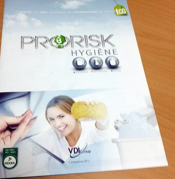Brochure VDI Group Pro Risk